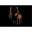 NR Dogs Fun Mandala Prémium kutyafekhely